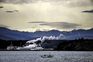 environmental hazards and pollution